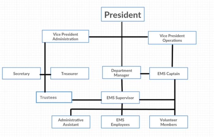 Hierarchy of the Board of Directors