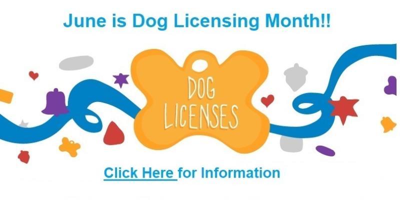 dog licensing information